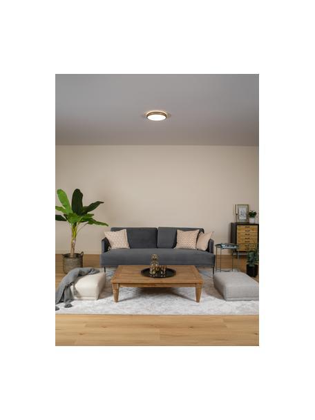 Plafón pequeño LED Pescaito, Pantalla: metal pintado, Negro, dorado, Ø 28 x Al 7 cm