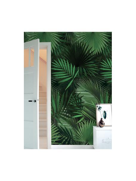 Carta da parati Palm Leaves, Tessuto non tessuto, ecologico e biodegradabile, Verde, Larg. 98 x Lung. 280 cm