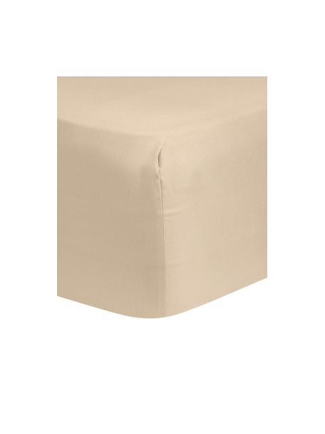 Lenzuolo con angoli in raso di cotone color taupe Comfort, Taupe, 90 x 200 cm