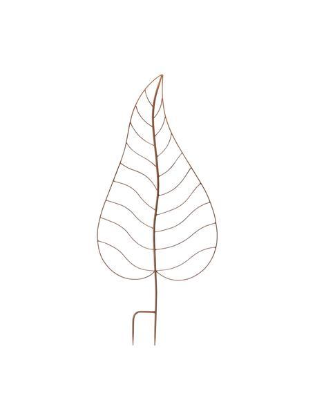 Pflanzenrankhilfe Roya aus Edelrost, Metall, beschichtet mit Echtrost, Rostbraun, 44 x 100 cm