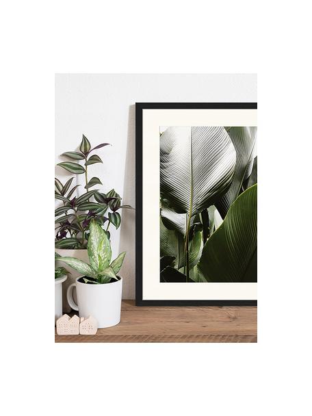 Ingelijste digitale print Palm Tree Leaves, Afbeelding: digitale print op papier,, Lijst: gelakt hout, Multicolour, 43 x 53 cm