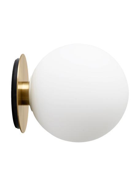 Applique a LED TR Bulb, Paralume: vetro opale, Base della lampada: ottone spazzolato, Ottonato, Ø 20 x Prof. 22 cm