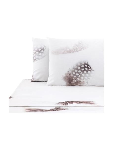 Set lenzuola in cotone Light, Tessuto: Renforcé Numero di fili 1, Bianco, marrone, grigio, 240 x 270 cm + 2 federe 50 x 75 cm