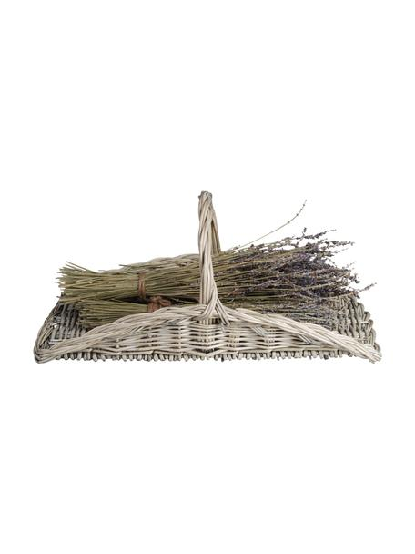 Kosz do zbierania kwiatów Sara, Gałązki wierzby, plecione, Beżowy, S 53 x W 24 cm
