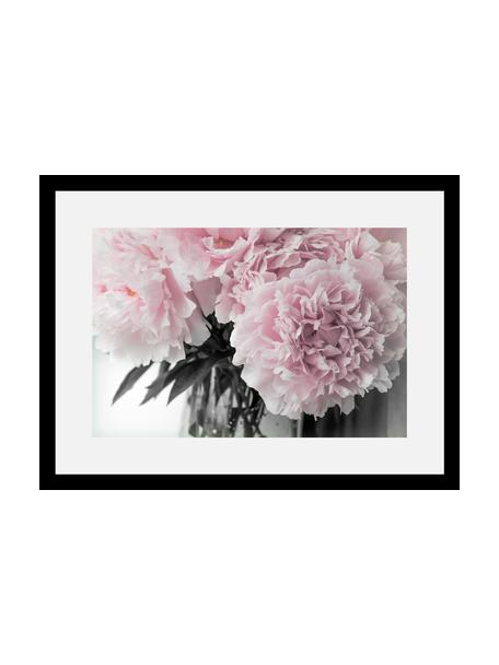 Gerahmter Digitaldruck Pink Flowers, Bild: Digitaldruck, Rahmen: Echtholzrahmen, Front: Acrylglas, Rückseite: Mitteldichte Holzfaserpla, Bild: Rosatöne, Weiß, Dunkelgrün Rahmen: Schwarz, 40 x 30 cm