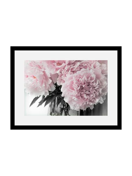 Impresión digital enmarcada Pink Flowers, Parte trasera: tablero de fibras de dens, Ilustración: rosa, blanco, verde oscuro Marco: negro, An 40 x Al 30 cm