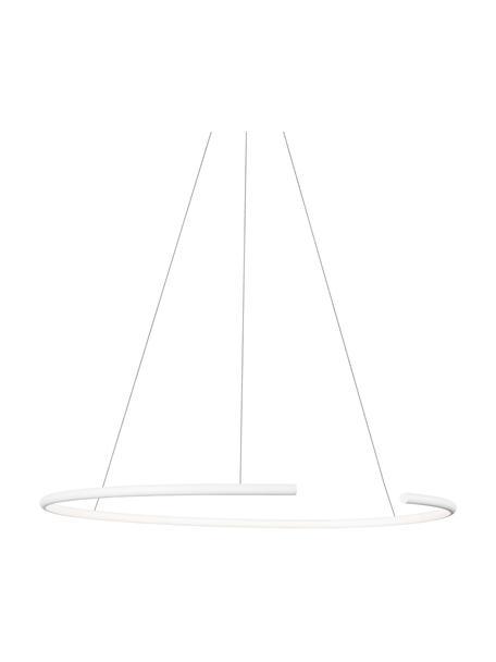Große LED-Pendelleuchte Breda in Weiß, Lampenschirm: Aluminium, Baldachin: Aluminium, Weiß, Ø 70 x H 200 cm
