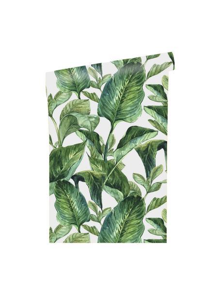 Zelfklevend behang Leaves, Zelfklevende vinyl folie, Wit, groen, 90 x 250 cm