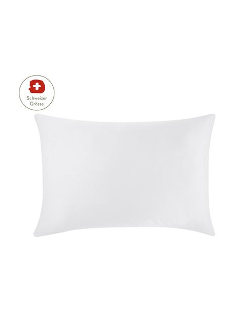 Baumwollsatin-Kissenbezug Comfort in Hellgrau, 50 x 70 cm, Webart: Satin, leicht glänzend Fa, Hellgrau, 50 x 70 cm