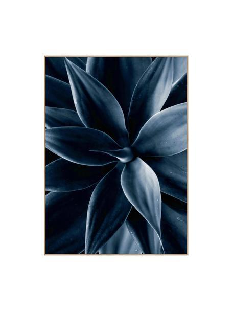 Oprawiony druk cyfrowy Dark Plant I, Czarny, niebieski, S 50 x W 70 cm