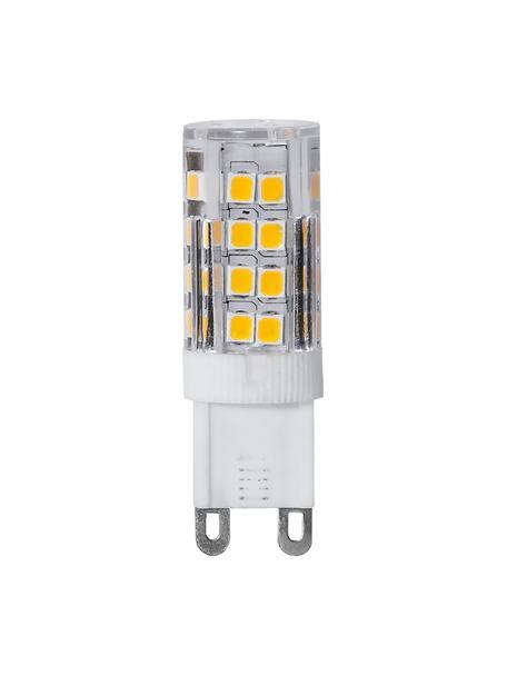 G9 Leuchtmittel, 2.8W, warmweiß, 3 Stück, Leuchtmittelschirm: Glas, Leuchtmittelfassung: Keramik, Transparent, Ø 2 x H 5 cm