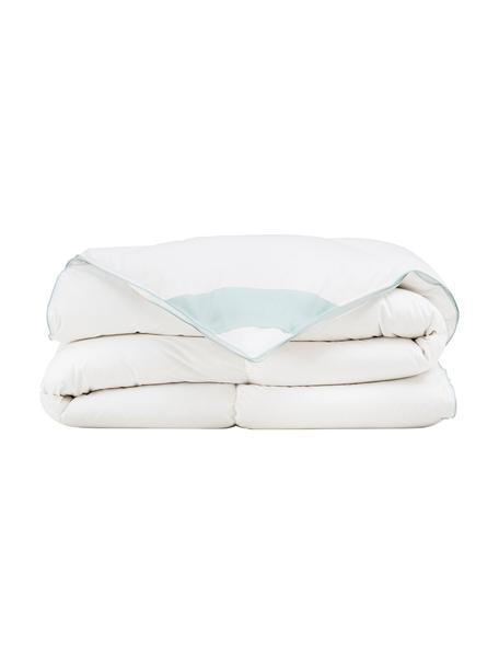 Reine Daunen-Bettdecke Premium, extra warm, Hülle: 100% Baumwolle, feine Mak, Weiß, 240 x 220 cm
