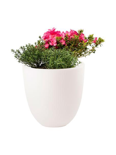 Bodenleuchte Shining Curvy Pot mit Stecker, Leuchte: Kunststoff, Weiss, Ø 39 x H 39 cm