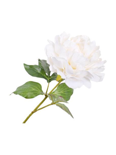 Kunstblume Pfingstrose, Weiß, Kunststoff, Metalldraht, Weiß, L 57 cm