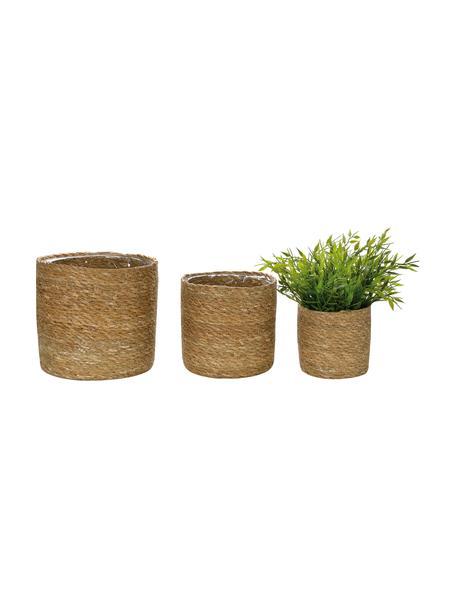 Plantenpottenset Julka van jute, 3-delig, Jute, Beige, Set met verschillende formaten