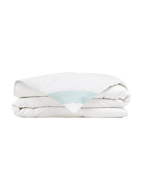 Edredón de plumón Comfort, ligero, Funda: 100%algodón, sarga de Ma, Blanco con ribete turquesa satinado, Cama 90 cm (150 x 200 cm)