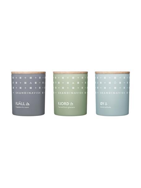 Set 3 candele profumate Explore, Contenitore: vetro, Coperchio: legno di betulla, Scatola: cartone, Multicolore, Larg. 5 x Alt. 7 cm
