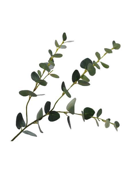Dekoracyjna gałązka eukaliptusa, Tworzywo sztuczne, Zielony, D 79 cm