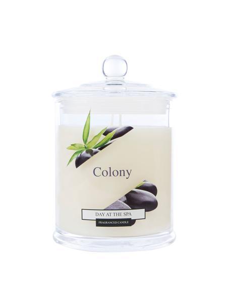 Candela profumata a due stoppini Colony (geranio, lavanda, rosa), Contenitore: vetro, Geranio, lavanda, rosa, Ø 10 x Alt. 14 cm