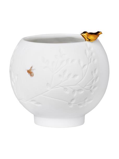 Porseleinen waxinelichthouder Golden Bird in wit, Porselein, Wit, goudkleurig, Ø 7 x H 7 cm
