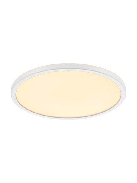 Klein dimbaar LED paneel Oja, Lampenkap: kunststof, Diffuser: kunststof, Wit, Ø 29 x H 2 cm