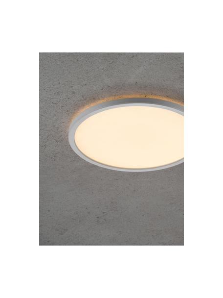 Plafón pequeño LED regulable Oja, Pantalla: plástico, Blanco, Ø 29 x Al 2 cm