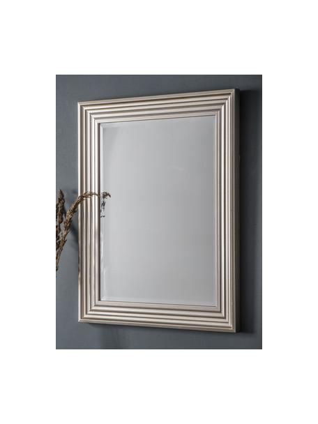 Specchio rettangolare da parete Haylen, Cornice: materiale sintetico, Superficie dello specchio: lastra di vetro, Platinato, Larg. 64 x Alt. 79 cm