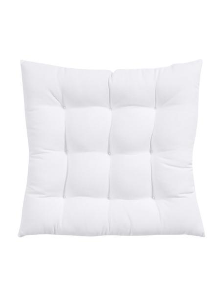 Cuscino sedia bianco Ava, Rivestimento: 100% cotone, Bianco, Larg. 40 x Lung. 40 cm