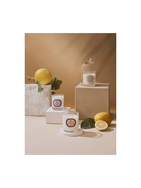 Candela profumata Aromatherapy (lavanda), Contenitore: vetro, Lavanda, Ø 8 x Alt. 9 cm