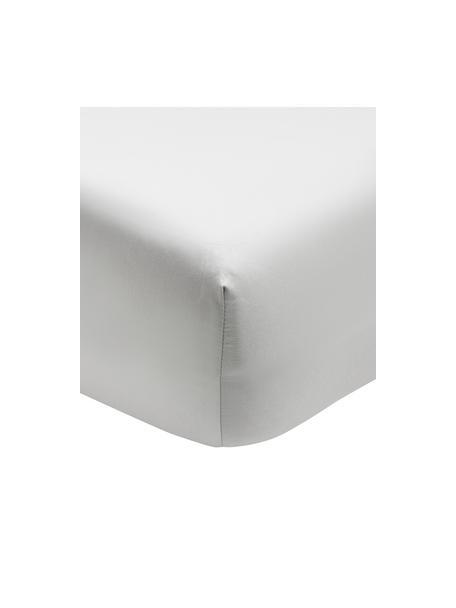 Lenzuolo con angoli in raso di cotone grigio chiaro Premium, Grigio chiaro, Larg. 90 x Lung. 200 cm