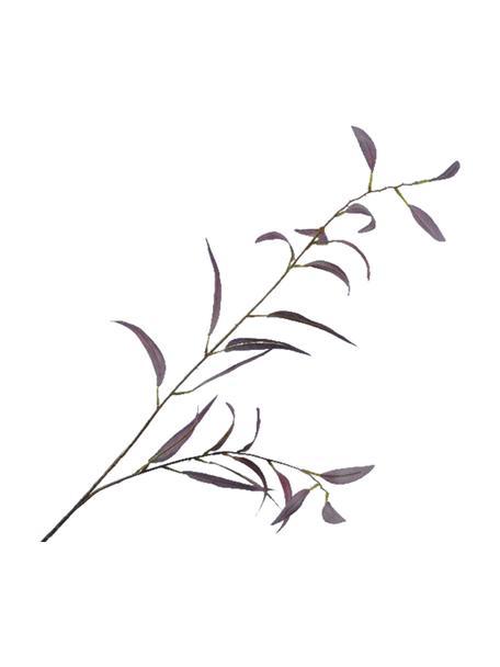 Sztuczny kwiat eukaliptusu Lili, Tworzywo sztuczne, Purpurowy, zielony, D 230 x W 10 cm