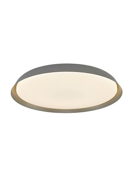 LED plafondlamp Piso, Lampenkap: gecoat metaal, Diffuser: kunststof, Grijs, Ø 37 x H 5 cm