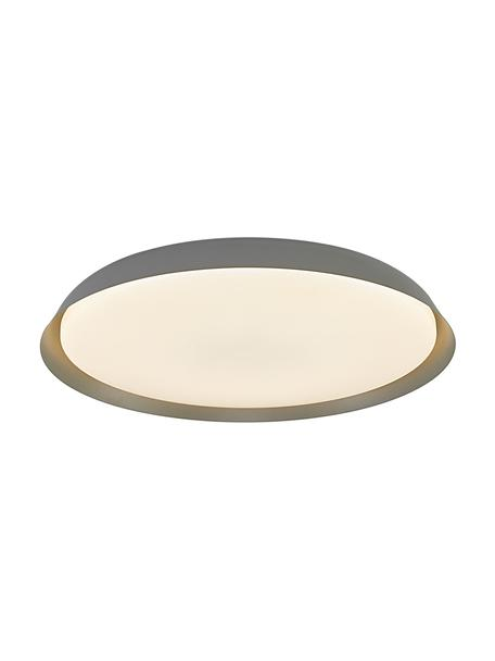 Plafoniera a LED grigia Piso, Paralume: metallo rivestito, Grigio, Ø 37 x Alt. 5 cm