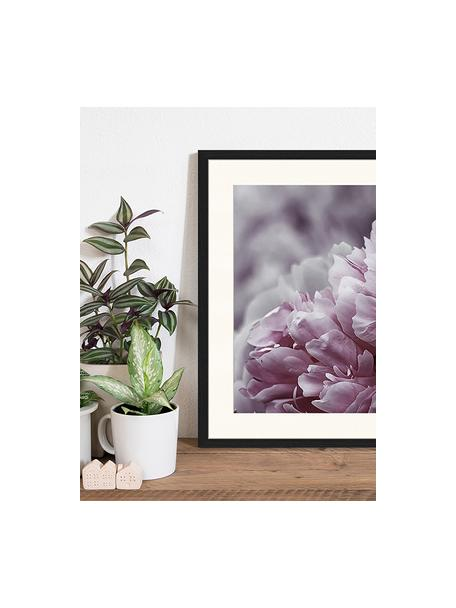 Ingelijste digitale print Pink Flower, Afbeelding: digitale print op papier,, Lijst: gelakt hout, Multicolour, 43 x 53 cm