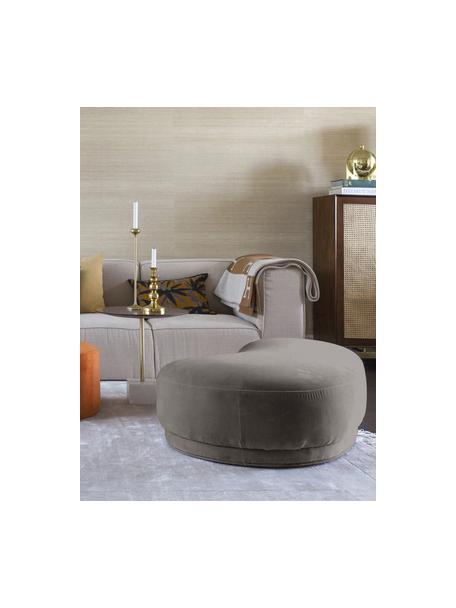 Samt-Sitzbank Coconino in Grau, gepolstert, Bezug: Baumwollsamt (89% Baumwol, Rahmen: Kiefernholz, Grau, 160 x 36 cm
