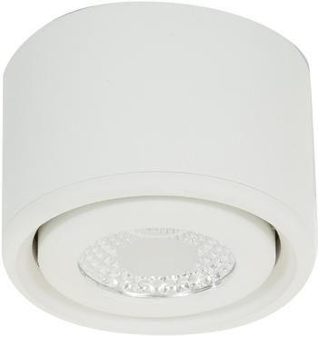 Stropná bodová LED lampa Anzio