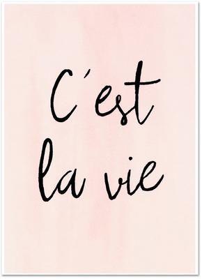 Póster C'est La Vie