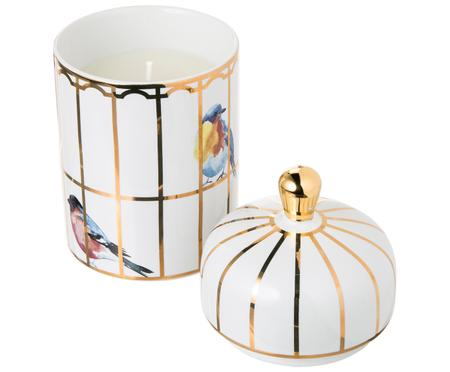 Bougie parfumée Gilded Cage (verveine citronnée)