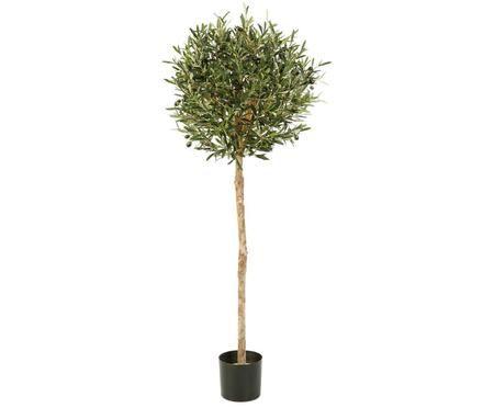 Planta artificial Olivo