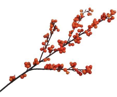 Kvetinová dekorácia Beerenzweig Betina