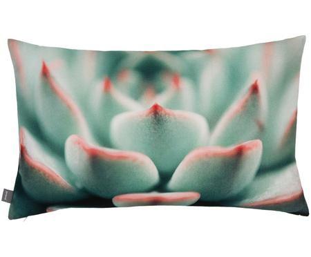 Poszewka na poduszkę  Succulent