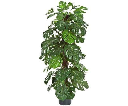 Planta artificial Philo