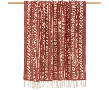 Pled Masai