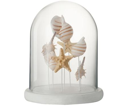 Cloche en verre Shell