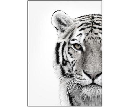 Ingelijste digitale print White Tiger