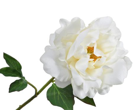 Sztuczny kwiat piwonii Ania
