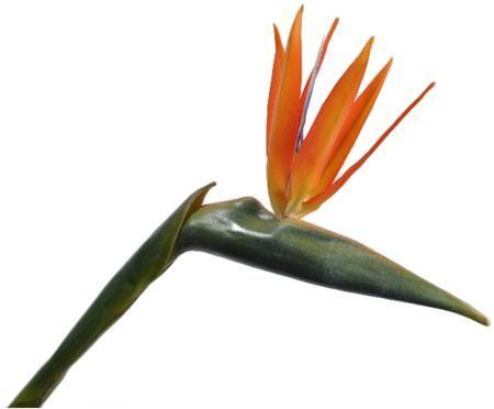 Fleur de strelitzia artificielle Stenia