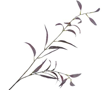 Fleur d'eucalyptus artificielle Lili