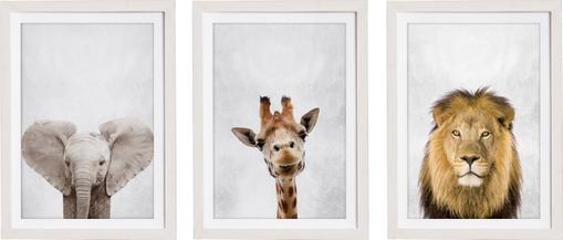 Gerahmtes Digitaldruck-Set Wild Animals, 3-tlg.