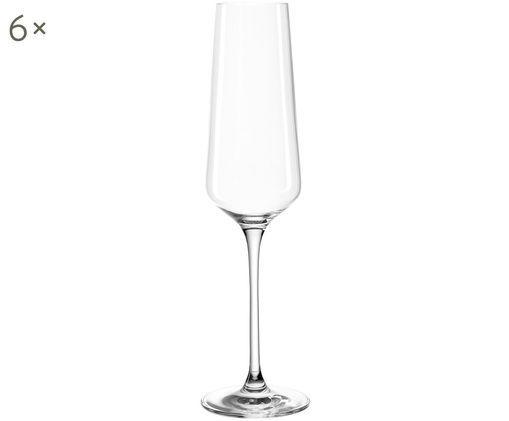 Sekt- und Champagnergläser Puccini, 6er-Set, Transparent